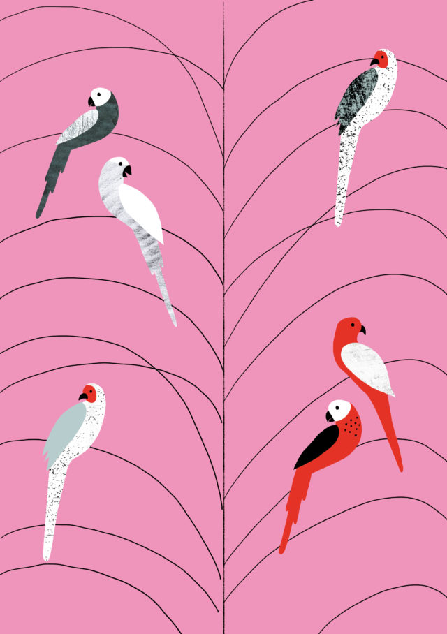 Poster Colletion, tropicana_birds_on_branch_1